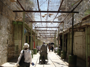 The wire mesh Palestinians must live under to try to keep out some of the things settlers throw down at them