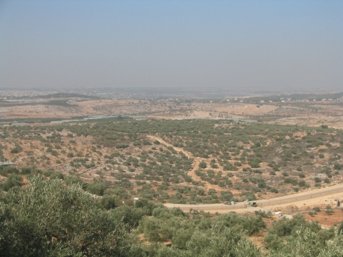 All of this land, owned by Palestinians, can be bulldozed and/or developed at any time by the Israeli authorities, settlement construction companies, or settlers themselves. There is very little recourse for Palestinian farmers who lose land and property in this way.