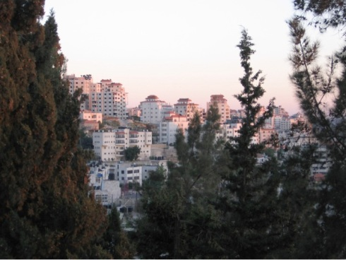 A view of Ramallah at dusk through the trees of the Friends School