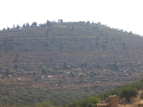 One of the striped hills surrounding Ramallah during the day