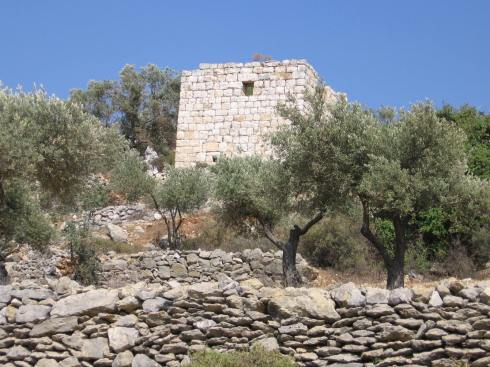 A qasr, or hand-wrought stone dwelling. Farmers used to use these while tending to fields far from home. They can be found dotting the hills around Ramallah (and I assume throughout the West Bank).